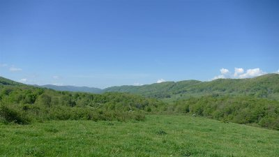 Lots & Land For Sale: Big Valley Rd