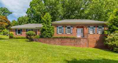 Albemarle County Single Family Home For Sale: 2813 Northfield Rd