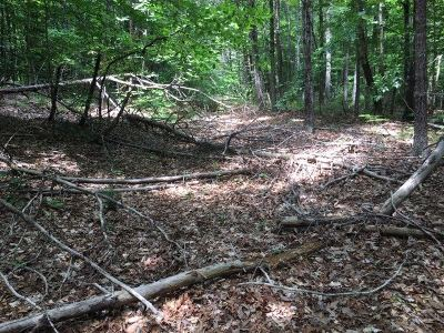 Nelson County Lots & Land For Sale: 385 Piney Mountain Ln