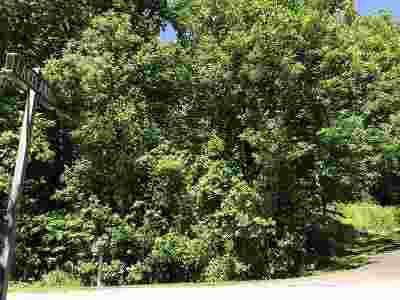 Nelson County Lots & Land For Sale: Adial Rd
