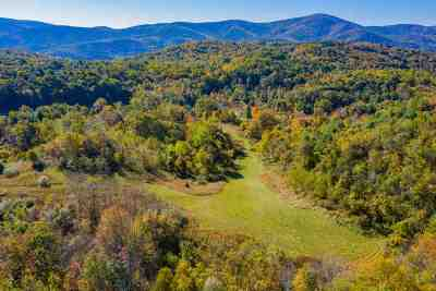 Nelson County Lots & Land For Sale: 1887 Fork Mountain Ln