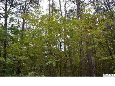 Lots & Land For Sale: Lot 111 William Monroe Trl