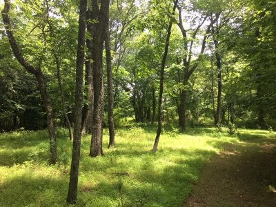 Nelson County Lots & Land For Sale: 225 Old Turtle Pl