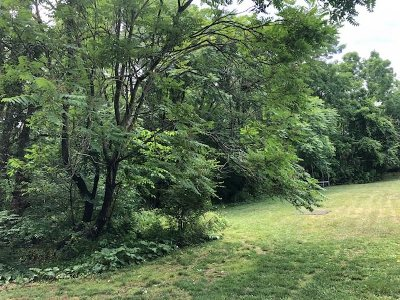 Staunton Lots & Land For Sale: 505 Mountain View Dr
