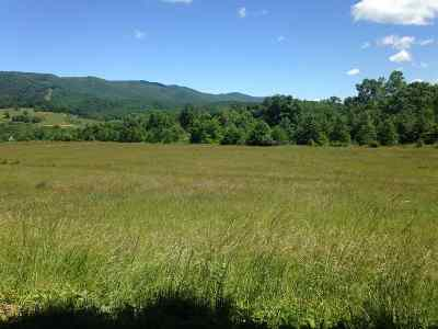 Lots & Land For Sale: 10586 Big Valley Rd