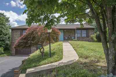 Single Family Home For Sale: 578 Dices Spring Rd