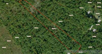 Lots & Land For Sale: Lot 45 Red Bird Dr