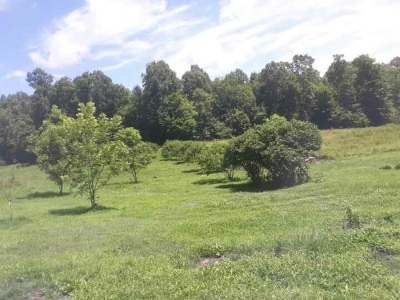 Louisa Lots & Land For Sale: 3174 Yanceyville Rd