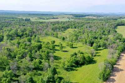Rockingham County Lots & Land For Sale: 50 Acres Cold Spring Rd