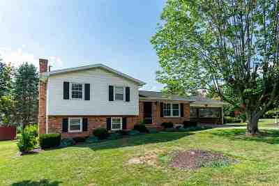 Harrisonburg Single Family Home For Sale: 971 Lee Ave