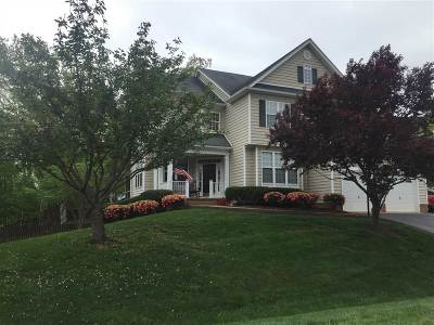 Albemarle County Single Family Home For Sale: 1935 River Inn Ln