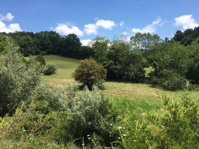 Augusta County Lots & Land For Sale: 918 Estaline Valley Rd