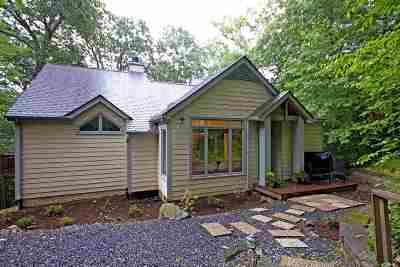 Nelson County Single Family Home For Sale: 598 Pedlars Edge Dr