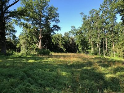 Augusta County Lots & Land For Sale: Moffett Branch Rd