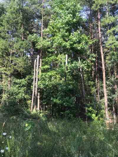 Louisa County Lots & Land For Sale: 001 Jackson Heights Rd