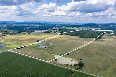 Rockingham County Farm For Sale: 2494 Kratzer Rd