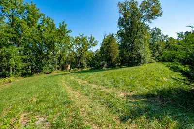 Mount Crawford Lots & Land For Sale: Meadow Top Ln