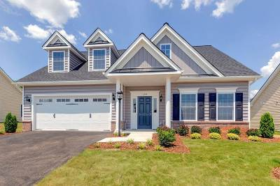 Fluvanna County Single Family Home For Sale: 160 Crape Myrtle Dr