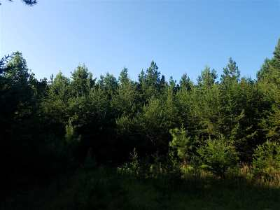 Lots & Land For Sale: 1600 Chopping Rd