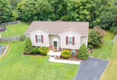 Waynesboro Single Family Home For Sale: 555 Link Rd