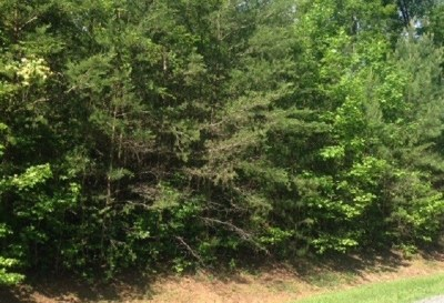 Louisa County Lots & Land For Sale: Indian Creek Rd