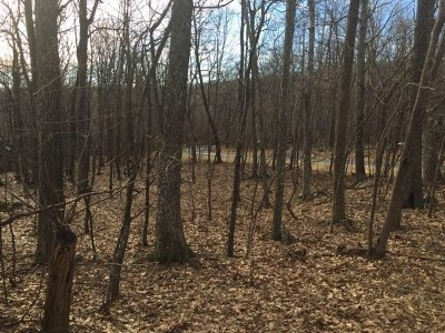 Nelson County Lots & Land For Sale: 149 Timber Camp Dr