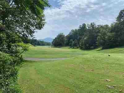 Nelson County Lots & Land For Sale: 170 Club Highland