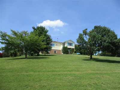 Fishersville VA Single Family Home For Sale: $365,000