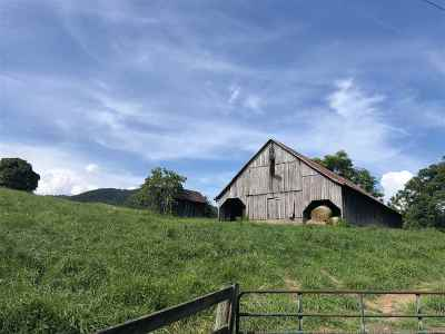 Nelson County Lots & Land For Sale: 4419 Old Roberts Mountain Rd