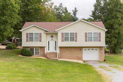 Augusta County Single Family Home For Sale: 358 Hermitage Rd