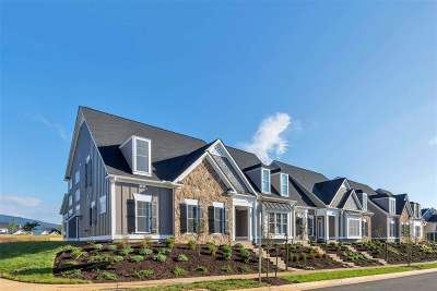 Albemarle County Townhome For Sale: 244 Fowler St