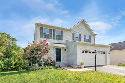 Barboursville Single Family Home For Sale: 168 Holly Hill Dr