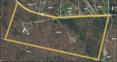 Albemarle County Single Family Home For Sale: 1451 Briery Creek Rd