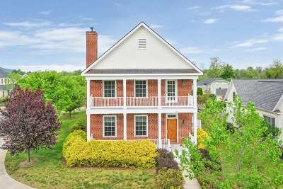 Albemarle County Single Family Home For Sale: 5211 Brook View Rd