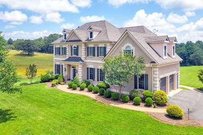 Albemarle County Single Family Home For Sale: 1795 Owensville Rd