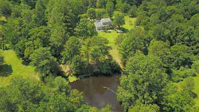 Albemarle County Single Family Home For Sale: 1680 Owensville Rd