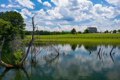 Albemarle County Single Family Home For Sale: 4437 Richmond Rd