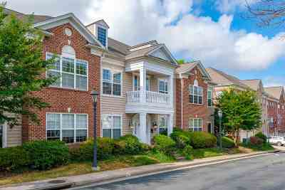 Albemarle County  Condo For Sale: 949 Glenwood Station Ln #106