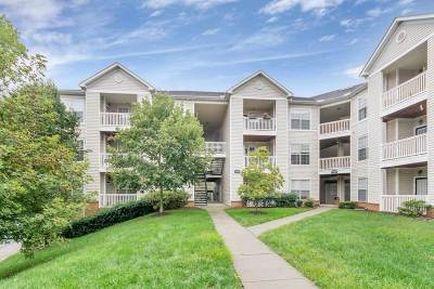 Albemarle County  Condo For Sale: 270 Riverbend Dr #4D