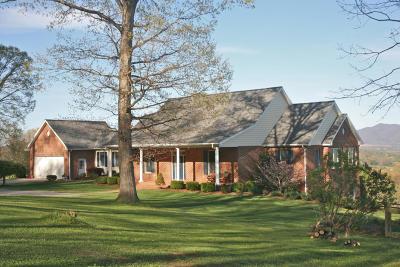 Lexington Single Family Home For Sale: 260 Crescent Oaks Ln