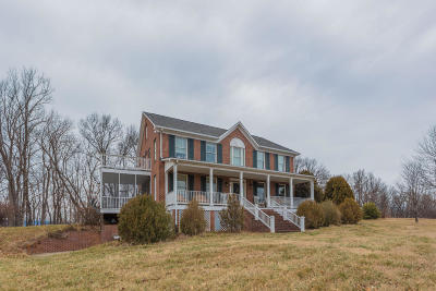 Lexington Single Family Home For Sale: 110 Wagonroad Ln