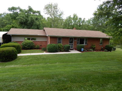 Lexington Single Family Home For Sale: 794 Valley Pike Rd