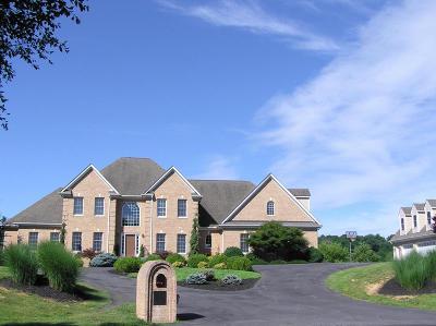 Lexington Single Family Home For Sale: 120 Shaner Hill Dr
