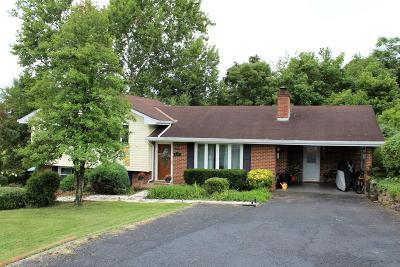 Lexington Single Family Home For Sale: 400 Battery Ln