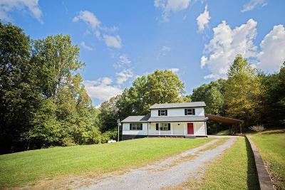 Buena Vista Single Family Home For Sale: 65 Twin Falls Ln