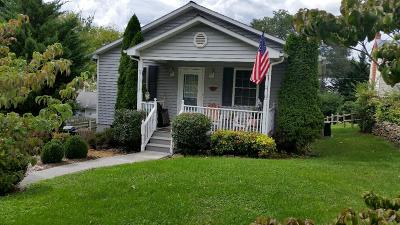 Lexington Single Family Home For Sale: 107 Moore St