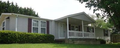 Buena Vista Single Family Home For Sale: 304 Hillside Dr
