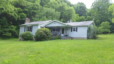 Lexington Single Family Home For Sale: 105 Hemlock Tree Ln