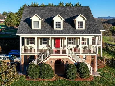 Lexington Single Family Home For Sale: 18 High Meadow Dr