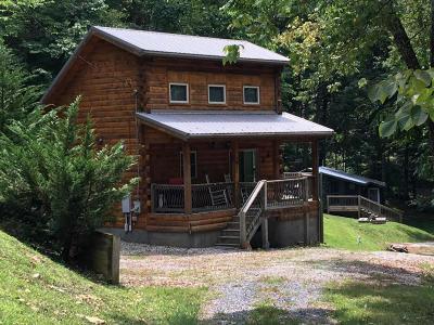 Lexington Single Family Home For Sale: 438 Katy Dr